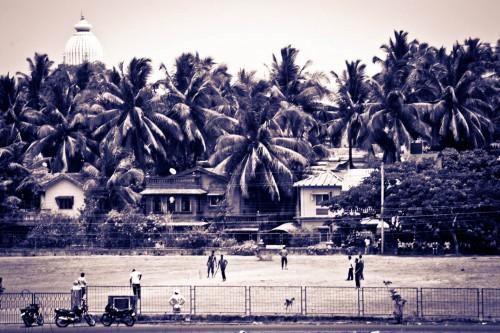 Cricket in Goa