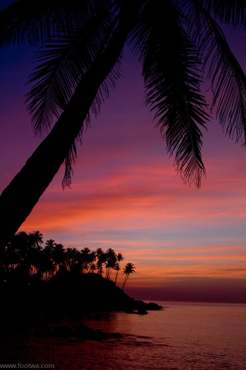 Twilight at Palolem, Beach, coconut tress, colomb beach, Goa, palm trees, Palolem, palolem beach, Top 10, twilight, twilight at beach, twilight at colomb beach, twilight in Goa, Photographer Anurag Jain