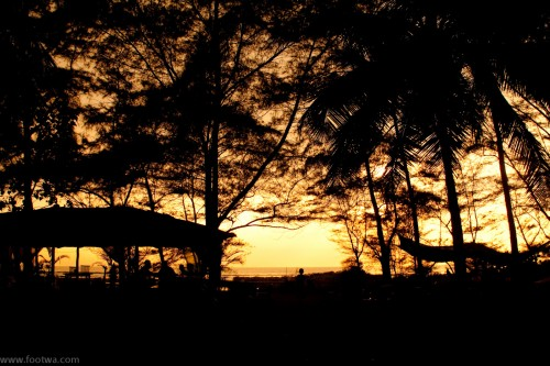 Montego Bay - Morjim, Goa, low light, Montego Bay, Morjim, Nature, Silhouette, tree silhouette, twilight, Photographer Anurag Jain