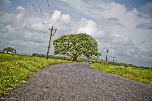 A bend in the road - Divar Island