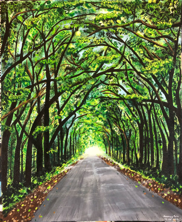 Road to Tambdi Surla